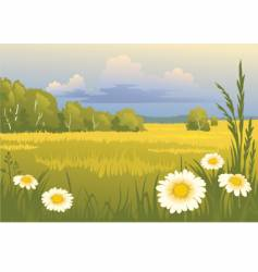 summer sunny landscape vector image vector image