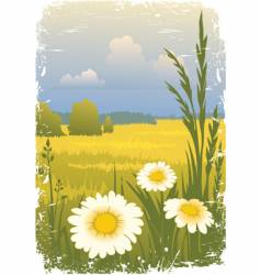 sunny landscape with flower vector image
