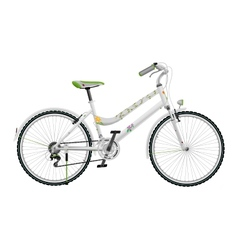 Ladys white bike vector image vector image