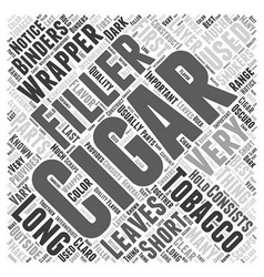 The Parts of a Cigar Word Cloud Concept vector image vector image