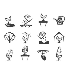 Plant and sprout growing icons set vector
