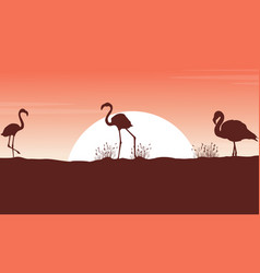 Collection flamingo landscape silhouettes at vector