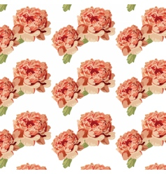 Peony pink flowers pattern vector image