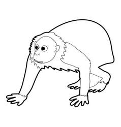 Bald wakari icon outline vector