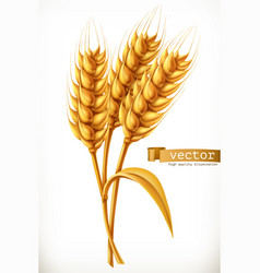 Ear of wheat 3d icon vector