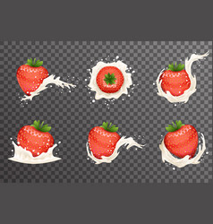 strawberry milk cream curl splash drops fruit vector image vector image