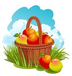 Basket with apples vector