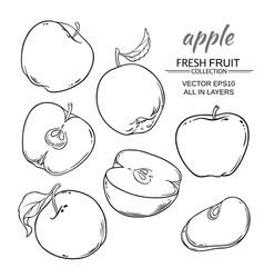 Apples set vector