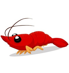 Crawfish vector
