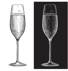Glass of champagne or sparkling wine hand drawn vector
