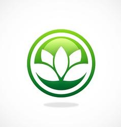 lotus flower spa icon logo vector image