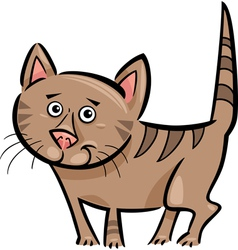 Cartoon of cat or kitten vector