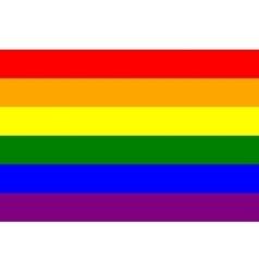 Rainbow gay pride flag symbol of lgbt movement vector