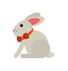 Easter bunny cute symbol vector