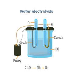 water electrolysis diagram vector image vector image