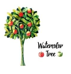Watercolor apple tree vector