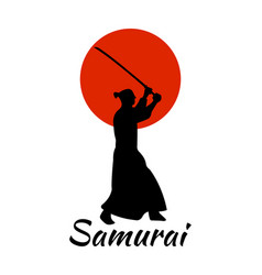 Japanese samurai warriors silhouette with katana vector