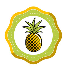 Emblem sticker delicious pineapple fruit icon vector