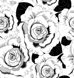 Pattern of roses vector