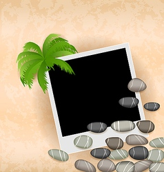 Photo frame background with stones and palm vector