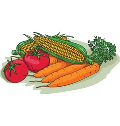 Vegetable garden crop harvest drawing vector
