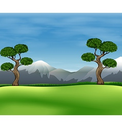 Beautiful view of the green field vector image vector image