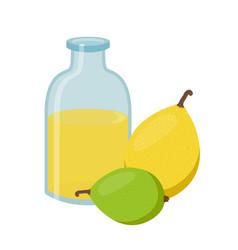 Marula exotic fruit and oil fresh vegetarian vector