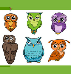 Owl bird characters cartoon set vector