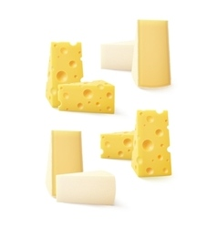 Set of pieces cheese swiss bri camembert vector