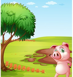 A pig introducing the pig farm vector image