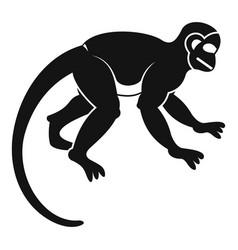 Capuchin monkey icon simple style vector
