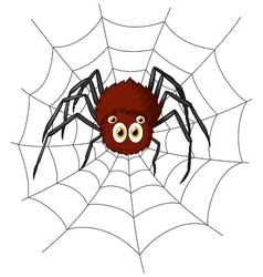 Cute spider cartoon vector image