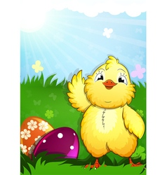 Little chicken and easter eggs vector