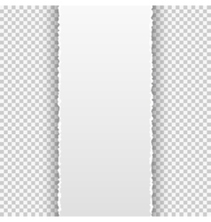Torn paper banner on the transparent background vector