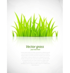 Background with grass vector