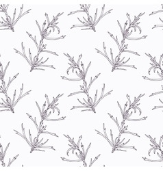 Hand drawn tarragon branch outline seamless vector