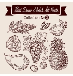 Hand drawn sketch set fruit vector