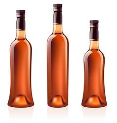 cognac brandy vector image