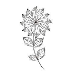 Dahlia flower decoration line vector