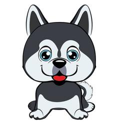 dog alaskan kli kai breed sitting icon flat vector image vector image