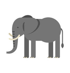Flat style of elephant vector