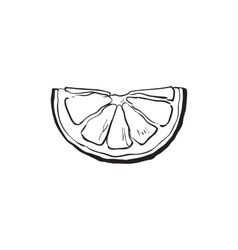 Hand drawn slice of lemon isolated vector