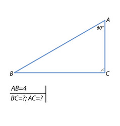 The task of finding leg and the hypotenuse in a vector