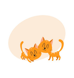 Two cute and funny sweet red cat characters vector