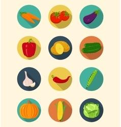 Vegetables icons set modern flat design healthy vector
