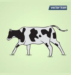 Cow flat vector