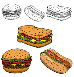 hamburger sandwich hot dog hand drawn vector image