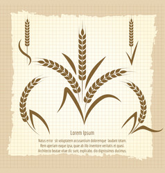 wheat branches vintage poster design vector image vector image