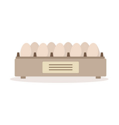 incubator egg tray poultry breeding vector image