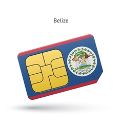 Belize mobile phone sim card with flag vector